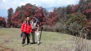 Rhododendron Trek