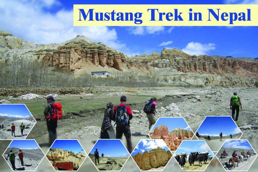 Mustang trek